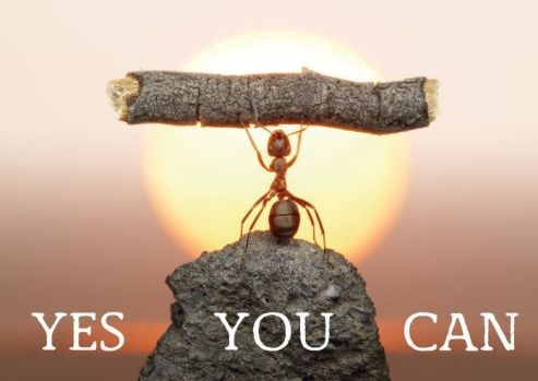 yes you can 2