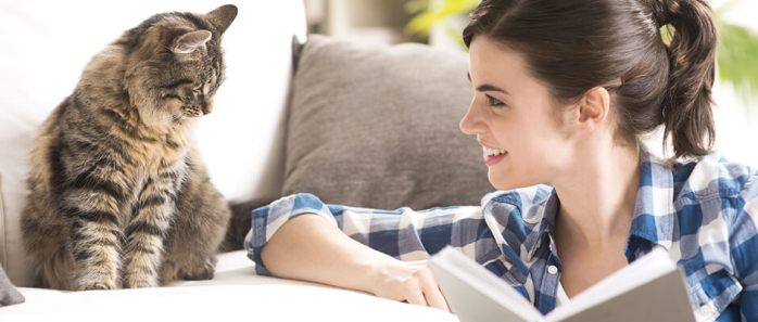 4 bonnes raison d'adopter un chat adulte