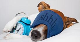 Avoir sommeil mais ne pas réussir à dormir : que faire en cas de troubles du sommeil ?